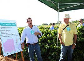 Projeto da EPAMIG seleciona variedades de café para o Cerrado Mineiro