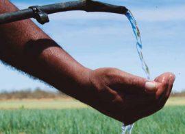 Projeto de irrigação transforma a fruticultura no NE