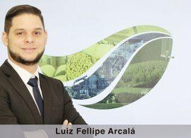 Gerenciamento Florestal: o futuro de um negócio em ascensão