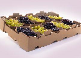 Klabin lança bandeja para frutas e legumes totalmente biodegradável