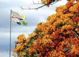 CRV Lagoa tem planos ambiciosos para voltar ao topo