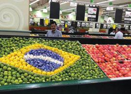 Missão aos Emirados Árabes abrirá oportunidades para o agro brasileiro
