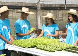 Fundação Bradesco abre inscrições para o Curso Técnico em Agropecuária