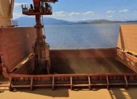 Novo embarque de DDGs acontece no Porto de Paranaguá
