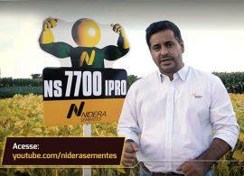 Nidera disponibiliza mais de 100 vídeos sobre tecnologia de sementes
