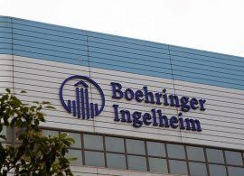 Divisão de Saúde Animal da Boehringer registra crescimento