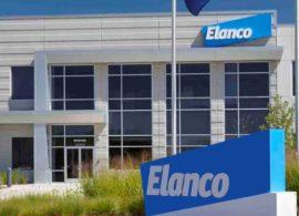 Elanco abre inscrições para o Programa de Estágio