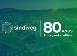 Sindiveg completa 80 anos de atuação no setor